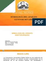 SEMIOLOGIA DEL APARATO GENITOURINARIO (1)