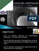 Patología Cristalino clase pregrado 2014
