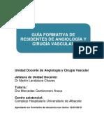 GUIA FORMACION DE RESIDENTES Cirugia_Vascular