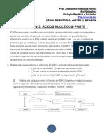 acidos nucleicosssssss