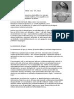 CUIDADO y CONTAMINACIÓN DEL AGUA.docx