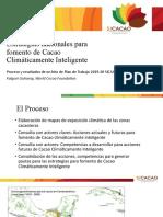 5.1. Estrategias nacionales CCI