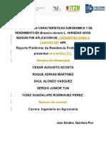 2° Rev. de Protocolo Equipo  CESAR AUGUSTO ACOSTA