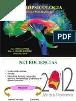 1 neurociencias- tema 12014.ppt