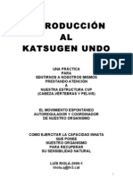 INTRODUCCIÓN AL KATSUGEN UNDO