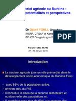entreprenariat-agricole-au-burkina-contraintes-potentialites-et-perspectives.pdf