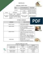 Adaptações - DENTIÇÃO.doc