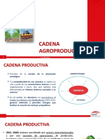 10 CA CADENAS AGROPRODUCTIVAS.pptx