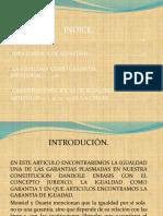 I_GARANTIAS_DE_IGUALDAD.pptx