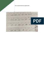 Valores experimentales líneas equiponteciales.pdf