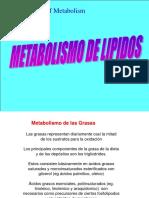 metabolismo lipidos.pdf