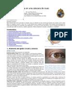 resumen oftalmo