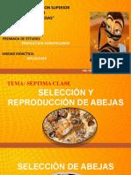 TEMA N°07 - APICULTURA