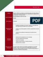 Guía de proyecto - S1 (1)