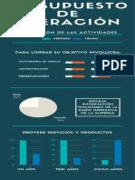 PResupuesto de OPERACIÓN.pdf