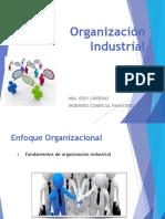 1.OI_INTRO_10.pdf