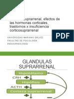 trastornos insuficiencia corticosuprarrenal_2020