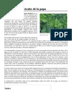 Enfermedades_virales_de_la_papa