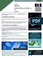 5.5.2.pdf