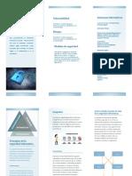 folleto Seguridad informatica