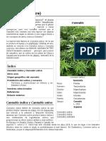 Cannabis_(género)