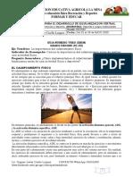 GUIAS DE EDUFISICA GRADO DECIMO III.docx.pdf