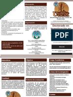 Tríptico Doctorado en Investigación en Educación CUNZAC 2020