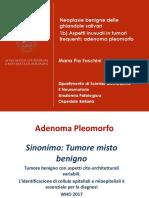 Adenoma Pleomorfo 2.pdf