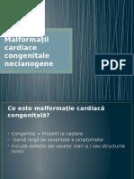 MCC_necianogene-13698.pdf