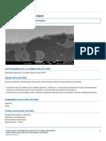 m2-nanochimie-et-nano-objets (2).pdf