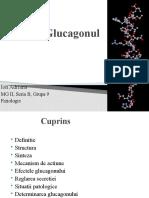 139902318-Glucagonul-fizio.pptx