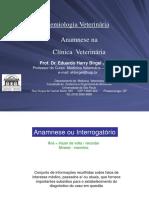 Anamnese na Clínica Veterinária