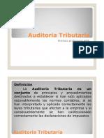 PPT TALLER AUDITORIA TRIBUTARIA.pdf