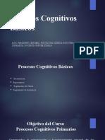 Procesos Cognitivos General