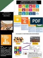 objetivos desarrollo sostenible biblioteca.pdf