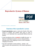 Reproduction ( Reproductive System)