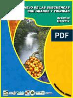 resumen-ejecutivo-pm-ciri-y-trinidad-2008
