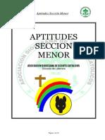 Aptitudes Sección Menor.pdf