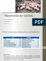 neumonias en cerdos