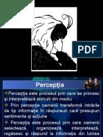 04_perceptie