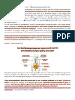 3. Respuesta inmune a bacterias - BP.pdf