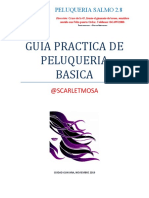 GUIA PRACTICA DE PELUQUERIA BASICA