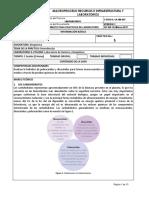 5.hidrolisisdecarbohidratos