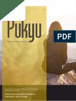 PUKYU, Revista de Derechos Humanos - CRIATURAS DE LA CONVENCIONALIDAD UNA APROXIMACIÓN CRÍTICA PARA SU PERFECCIONAMIENTO EN SEDE INTERNA