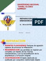 REPARACION-post-Endodoncia.ppt