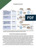 Postulados de Koch y Pasteur