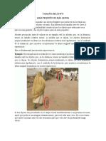 TAMAÑO RELATIVO-PERSPECTIVA LINEAL Y ALTURA RELATIVA