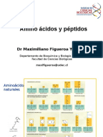 aa_y_peptidos
