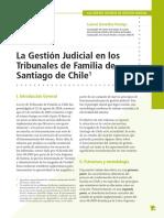 Gestión judicial en Familia - Chile