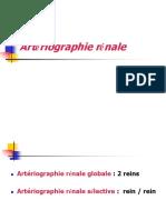 ARtério rénale.pdf
